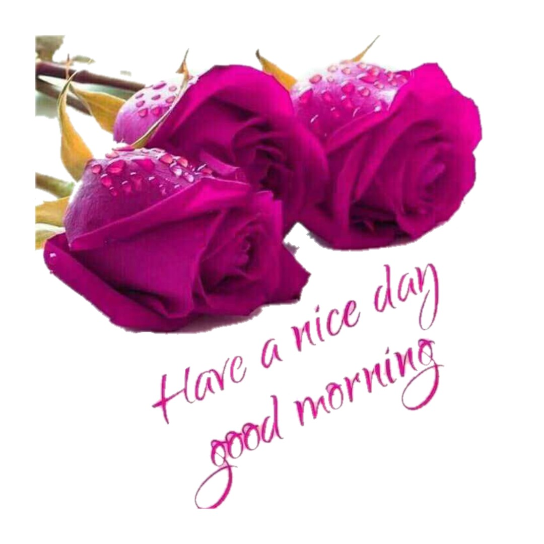 good morning latest images